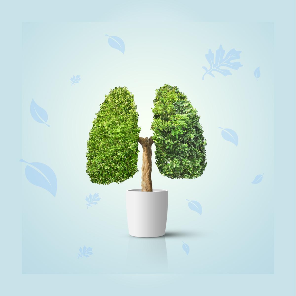 Respure - Maior qualidade do ar e melhor respiração